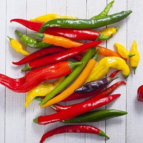 David's Garden Seeds Pepper Cayenne Blend D03020 (Multi) 25 Heirloom Seeds