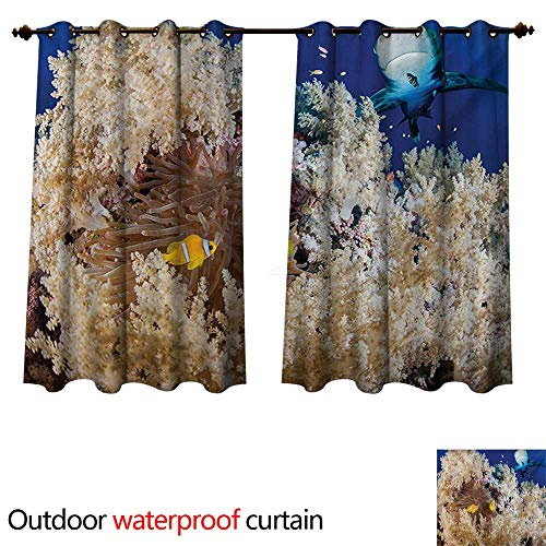 - WilliamsDecor Shark Home Patio Outdoor Curtain Reef with Little Clown Fish and Sharks East Egyptian Red Sea Life Scenery Food Chain W84 x L72(214cm x 183cm)