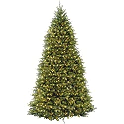 National Tree 12 Foot Dunhill Fir Tree with 1500 Clear Lights, Hinged (DUH-120LO-S)