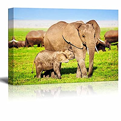 Canvas Prints Wall Art - Mother Elephant Feeding a Baby Elephant on African Savanna | Modern Wall Decor/Home Art Stretched Gallery Canvas Wraps Giclee Print & Ready to Hang - 24