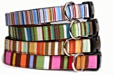Stripe dog collar : From the top, Naurical blue, Forest green, Pumpkin orange, Candy pink stripe cotton 100% fabric on nylon pet collar for puppy, small dog to large dog. Handcrafted and made in USA., My Pet Supplies