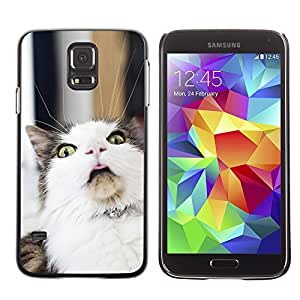 Cute Painting Slim pc Cover - Samsung Galaxy S5 ( LOL Funny Cat )