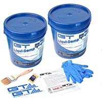 2 Gallon GT Liqui-Damp Car Liquid Sound Dampener Kit - Includes: 2 GAL GT Liqui-Damp, Instruction Sheet, Application Brush, Degreaser, GT MAT Decals, and Disposable Gloves