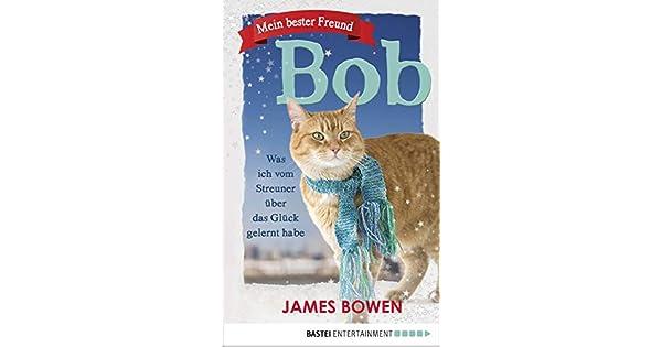 Bob Der Streuner Ebook