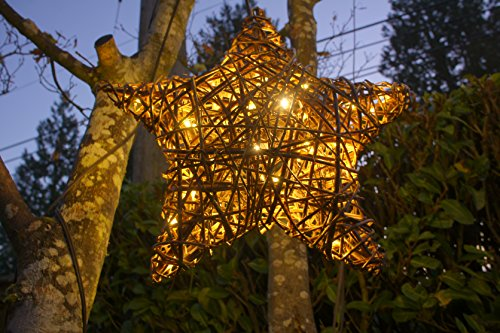 Outdoor Lighted Willow Tree - 4