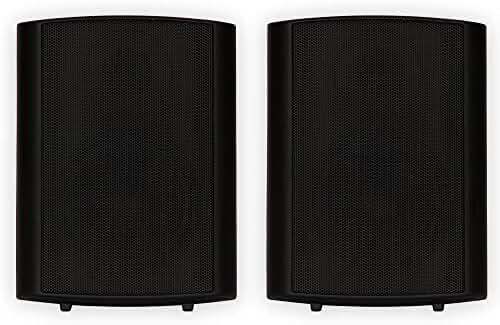 Theater Solutions TS425ODB Indoor/Outdoor Speaker (Black)