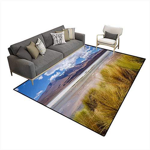 - Room Home Bedroom Carpet Floor Mat Laguna Honda in suLipez Altiplano reserva Bolivia