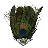 Asmita Peacock Feather Hackle Brooch/Hair Clip Accessory