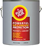 Fluid Film 1 Gallon Can Rust Inhibitor Rust