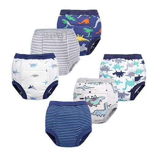 Top 10 best training underwear for boys 2t for 2020