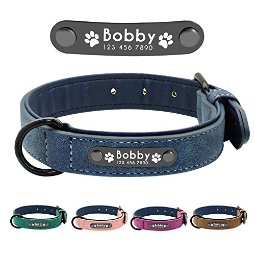 Didog Leather Custom Dog Collar,Engraved Dog Collars with Personalized Nameplate,Padded Custom Collar for Small Medium Large Dogs,Blue L Size