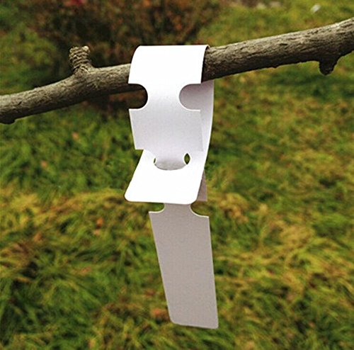 (KINGLAKE 200 Pcs White Plastic Plant Tree Tags Nursery Garden Lables 2x20cm Wrap Around Hanging Tags Nursery Garden Stakes Large Writing Surface)