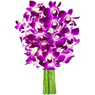 KaBloom The Ultimate Purple Orchid Bouquet of 10 Exotic Purple Dendrobium Orchids from Thailand