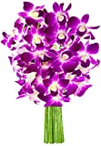 KaBloom The Ultimate Purple Orchid Bouquet: 10 Exotic Purple Dendrobium Orchids from Thailand without Vase