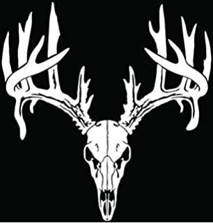 Amazoncom Bone Collector Deer Hunting Bowhunting GUN Sticker - Bow hunting decals for trucks
