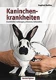 Kaninchenkrankheiten: Krankheiten vorbeugen, erkennen, behandeln