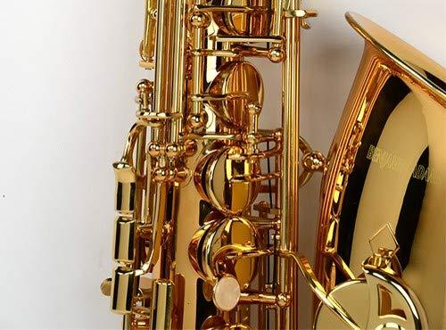 Benjamin Adams BAAS100XX Student Alto Saxophone
