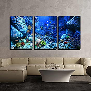 wall26 - 3 Piece Canvas Wall Art - Underwater World - Modern Home Decor Stretched and Framed Ready to Hang - 16