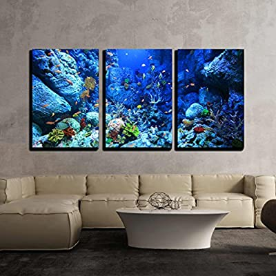 Underwater World x3 Panels, Made to Last, Delightful Piece