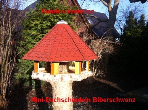 50 mm Gr/ün  23.415  Dachschindel Mini Dachschindeln Biberschwanz