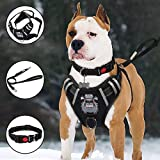 Best Dog Leash For Pullings - TIANYAO Big Dog Harness No-Pull Dog Vest Set Review