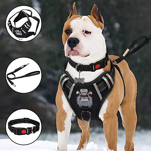 - TIANYAO Big Dog Harness No-Pull Dog Vest Set Reflective Adjustable Oxford Material Pet Harness for Large Dogs with Leash and Collar Walking Training and Hiking