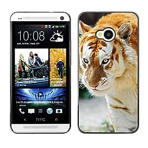 EJOY---Cubierta de la caja de protección la piel dura para el / HTC One M7 / --Tigre Albino