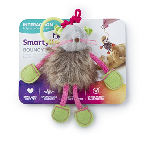 SmartyKat Interactive and Wand Cat Toys 3