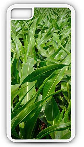iPhone 8 Plus 8+ Case Corn Field Maize Kernel Seed Cattle Food Flour Liquor Customizable by TYD Designs in White Plastic Black Rubber Tough Case