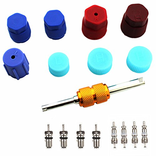 Air Conditioning Valve Core Kit | Car & Home AC R12 R134a Teflon Seal Refrigeration Schrader Valve Core with Valve Stem Core Rmover Tool Air Conditioning System Seal Caps Kit