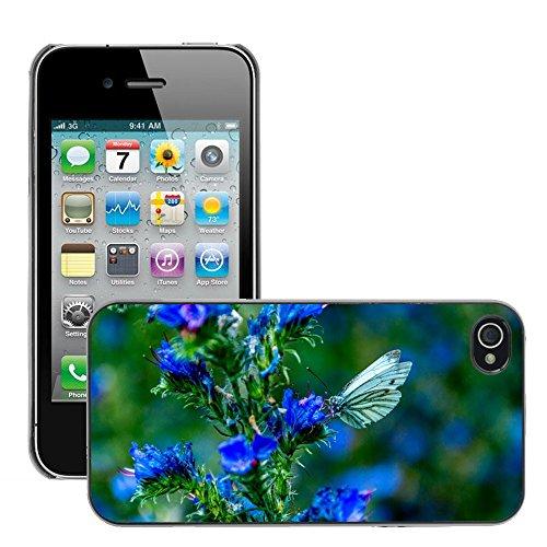 Bild Hart Handy Schwarz Schutz Case Cover Schale Etui // M00135541 Schmetterlings Insekten Tier Sommer // Apple iPhone 4 4S 4G