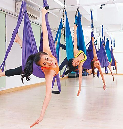 EverKing Aerial Yoga Straps Trapeze - Antigravity Yoga Swing/Sling/Inversion Tool,Air Flying Yoga Hammock Belt Fitness Swing Hammock for Yoga Inversion Exercises (Violet)