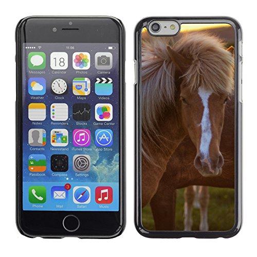 "Premio Sottile Slim Cassa Custodia Case Cover Shell // V00003445 chevaux en islande // Apple iPhone 6 6S 6G 4.7"""