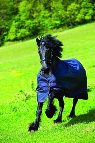 (87) - Horseware Amigo Bravo 12 XL Turnout Lite Sheet 87 B00ICJWUWC   87