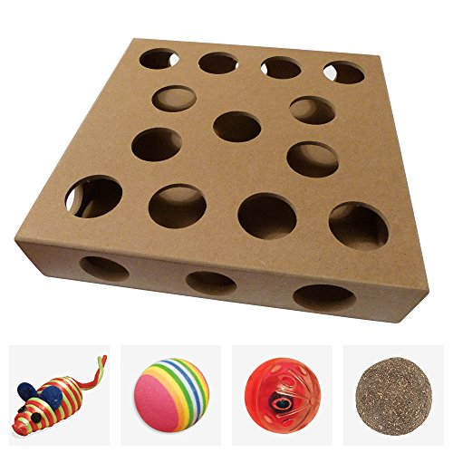 Unique Design, New to the US for 2017 - Interactive Indoor Kitten and Cat Toy Puzzle Box - From UK TV The Secret Life of Kittens - Four Cat Toys - Cat Box Toy