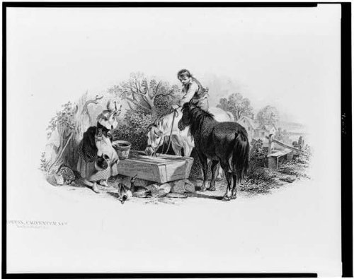 Photo: Bank Note Illustration,man,horseback,woman at watering trough,Country - Pictures Pakistani Female