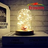 Erosom Table Lamp Glass Dome Bedside Lamp Battery Operated With LED String Lights Desk Lamp Christmas Gift Light Lamp ideal for Decoration Anywhere.(Warm White Light)