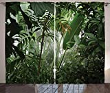Ambesonne Rainforest Curtains, Tropical Rainforest Preservation Humidity Palm Tree Wild Environment Misty Nature, Living Room Bedroom Window Drapes 2 Panel Set, 108 W X 84 L Inches, Green
