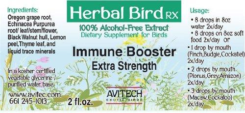 Avitech Herbal Bird Rx - Immune Booster (1 oz.)