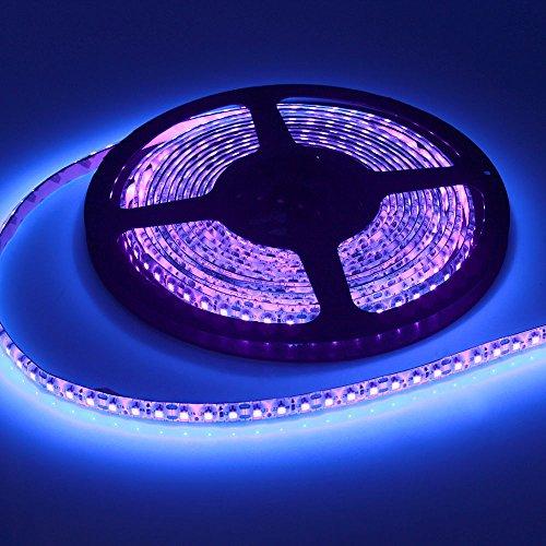 Joygo 5m 12V 3528 Waterproof 600 UV Ultraviolet LED Black Lights Night Fishing Strip (Blacklight String Lights)