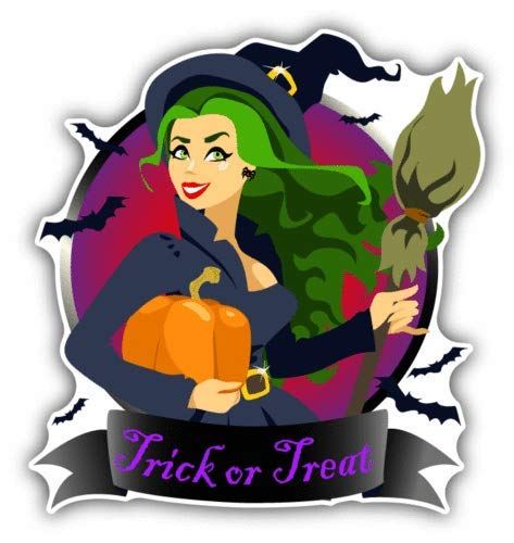 Craftmag Halloween Witch Broomstick Trick Or Treat Vinyl Sticker Decal Outside Inside Using for Laptops Water Bottles Cars Trucks Bumpers Walls, 5