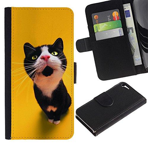LASTONE PHONE CASE / Luxe Cuir Portefeuille Housse Fente pour Carte Coque Flip Étui de Protection pour Apple Iphone 5 / 5S / The Curious Cat