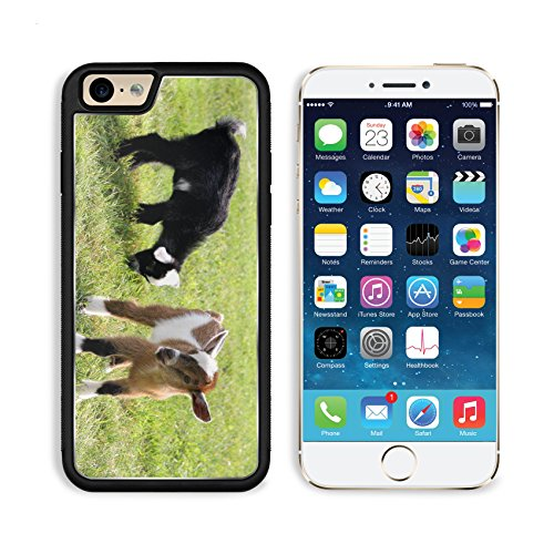Apple iPhone 6 6S Aluminum Case Two baby goats on a farm are outside grazing and eating grass IMAGE 30597231 by MSD Customized Premium Deluxe Pu Leather generation Accessories HD Wifi Luxury Protector