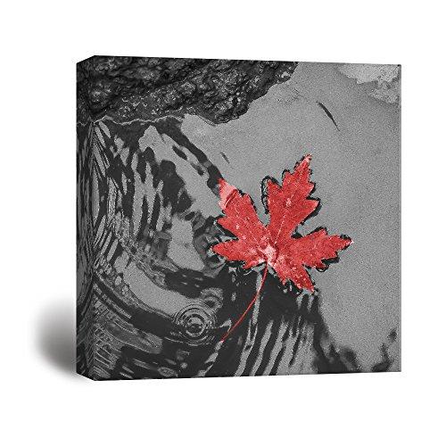 Red Maple Leaf Wall Decor ation