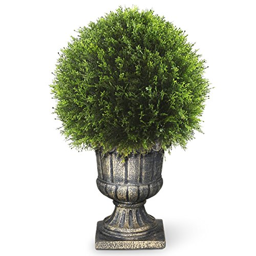 National Tree 27 Inch Upright Juniper Ball Topiary Tree in Decorative Urn (LCY4-704-27) by National Tree Company
