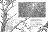 The Hobbit Sketchbook