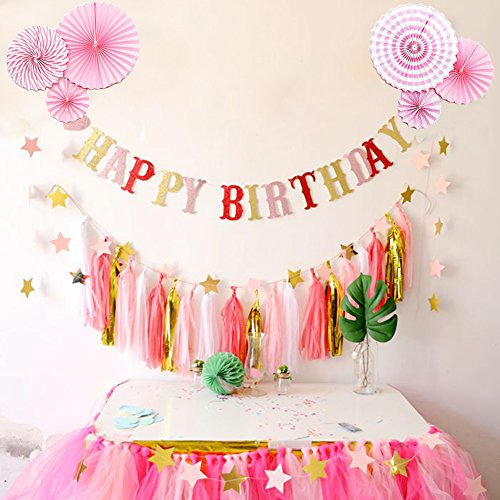 Birthday Party Decorations for Girl, HAPPY BIRTHDAY, Banner, Tissue Paper, Fans, Tassels, Pink, Hanging, Party Supplies, Indoor/Outdoor