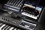 Korg Audio Interface