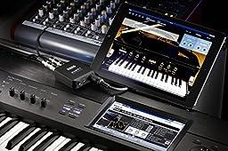 Korg PLUGKEYBK -Channel Audio Plug-In