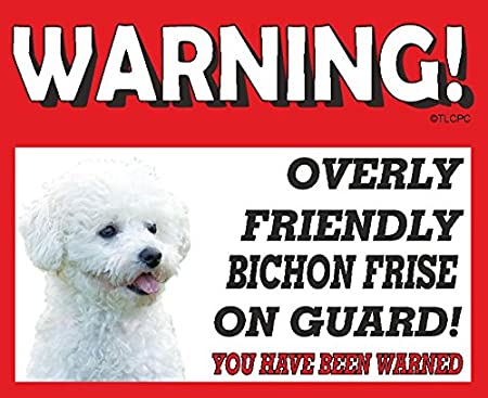 Bichon Frise DOG HANGING CAR SIGN with Rubber Sucker 31